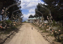 Protea Hill Farm Entrance